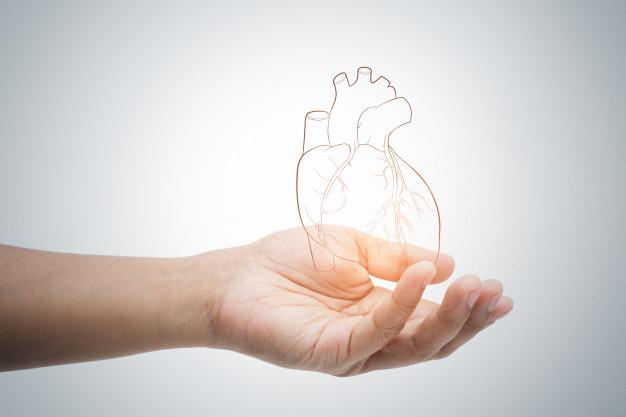 Cardiothoracic Vascular Surgery