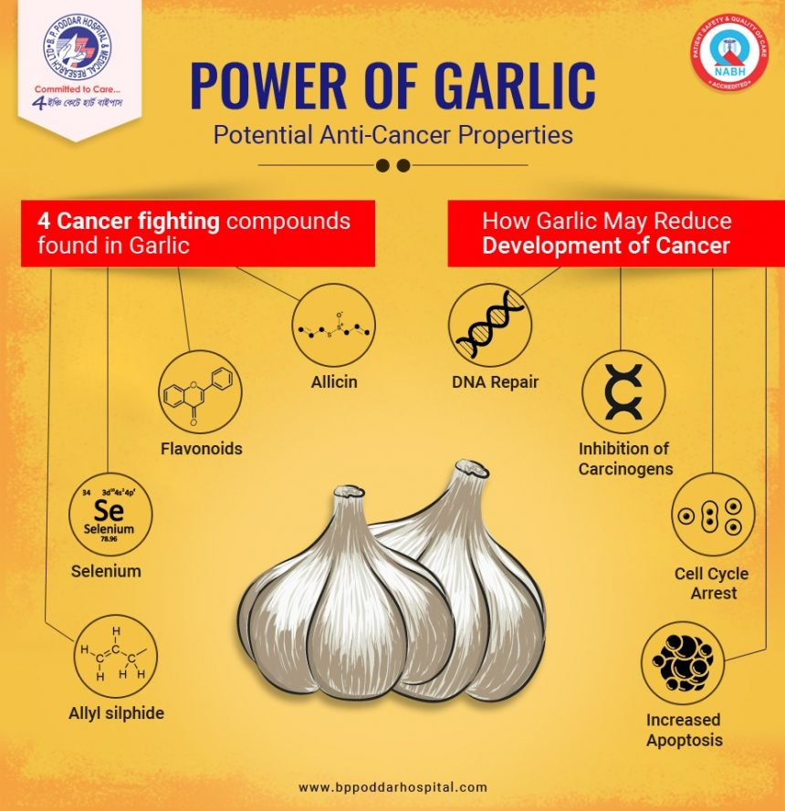 Power of Garlic- Potential Anti-Cancer Properties